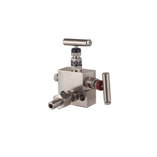 Stainless Steel 2 Way Valve Manifold